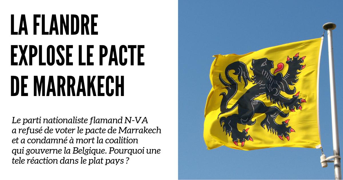 En refusant le pacte mortifère de Marrakech, les Flamands ont indiqué la marche à suivre aux Européens. Pourquoi cette réaction dans un pays si tranquille ? L'immigration est en train de détruire la Belgique et les Flamands ne veulent pas mourir avec elle.
