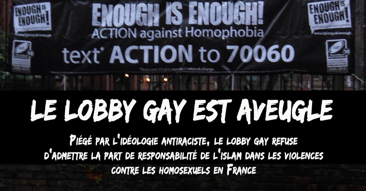La dernière enquête financée par le lobby gay sur les violences commises à l'encontre d'homosexuels en France dévoile des résultats alarmants. Mais plus inquiétant encore, cette enquête met en lumière le refus du lobby gay de reconnaître le rôle central que jouent dans cette violence les jeunes hommes issus de la culture musulmane. Ce négationnisme est porteur de graves menaces pour la sécurité et la liberté des gays dans notre pays.