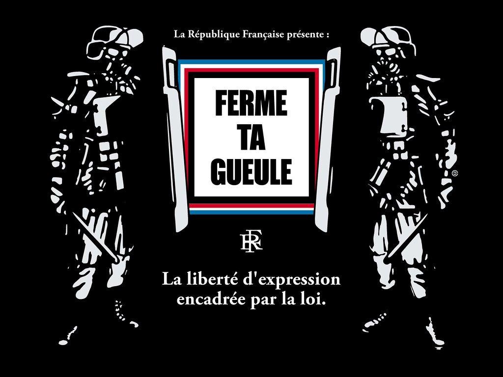 Read more about the article La liberté d'expression en France vient de prendre un sacré coup avec l'adoption de la loi Avia qui place la censure entre les mains des fanatiques et des intolérants. Une riposte politique est urgente.