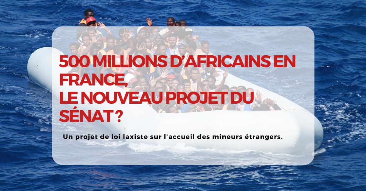 500 millions d'Africains en France, le nouveau projet du Sénat ?